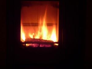 Brennstoff für den Kamin: Bioethanol