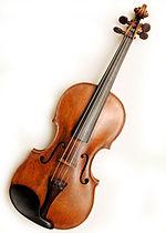 Geige nach einem Schlangenbiss spielen?